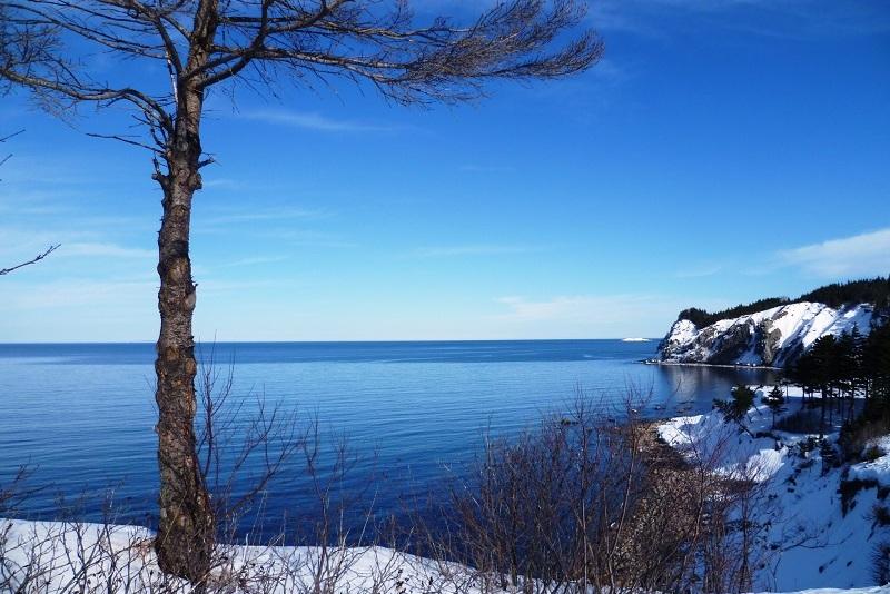 Au cœur d'un hiver canadien