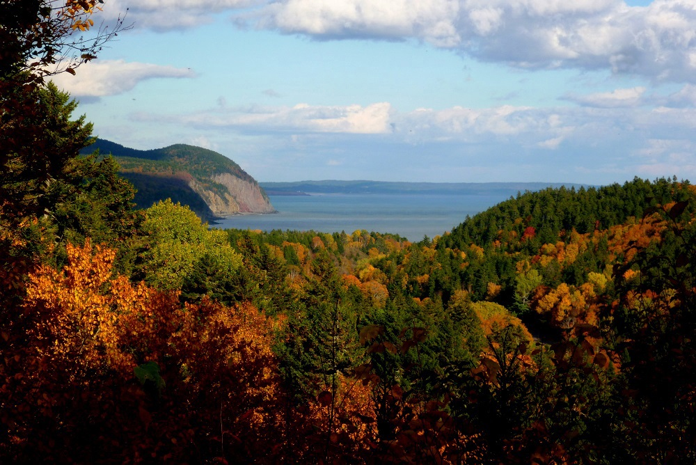 fundy-automne-modif